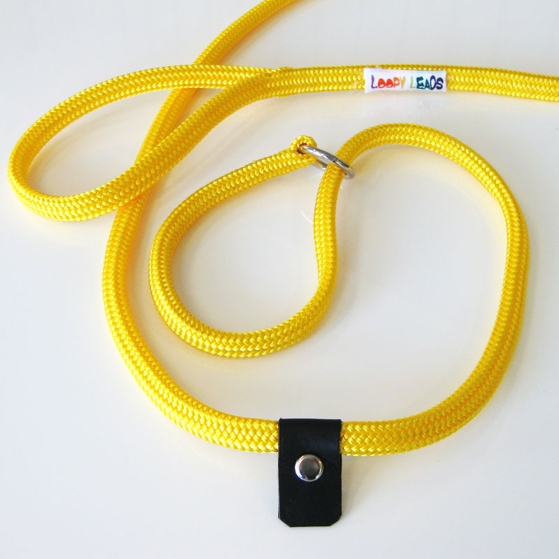 8mm-dog-slip-lead-closeup-